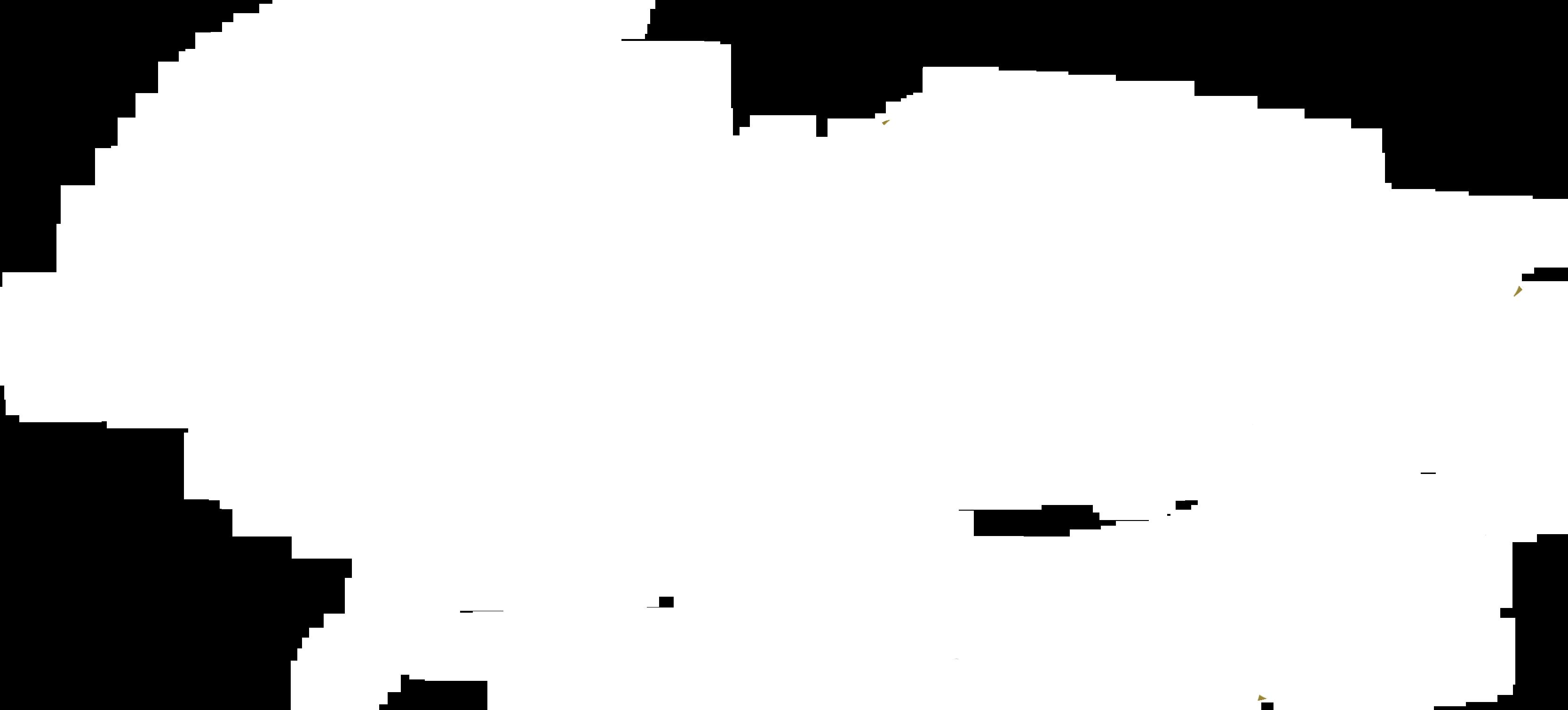LOGO fasanomusica-white